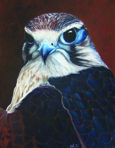 Painting of Peregrine Falcon by Christine Tiscione