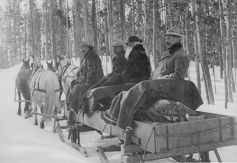 Theodore Roosevelt and others on a horse drawn wagon in Yellowstone National Park